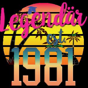 40. Geburtstag 40 Jahre Geburtstag 1991 geboren