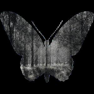 Schmetterling Black and White