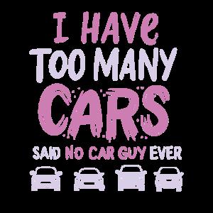 CAR GUY CAR ENTHUSIAST : Too Many Cars