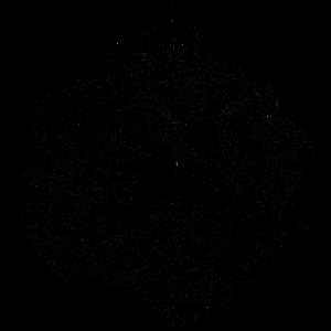 T Shirt Sommer Fisch Frau / Mann. Astrologie