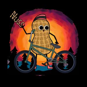Erdnuss Fahrradkurier Radfahren Radfahrer