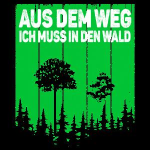 Wald Natur Baum - Aus dem Weg ich muss in den Wald