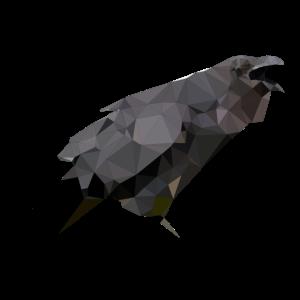 Polygon Krähe