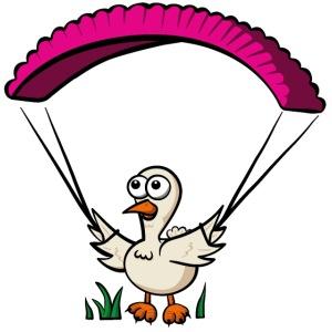 Groundhendl Groundhandling Hendl Paragliding Huhn