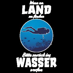 Tauchen Freitauchen Taucher Unterwasser Taucher