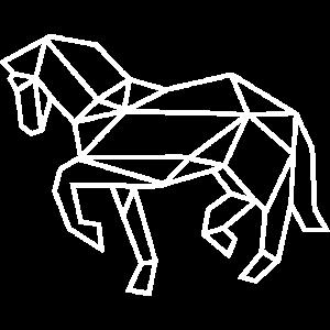 Pferd Geometrisch Positiv