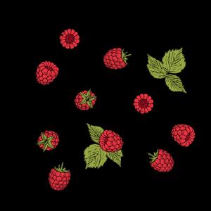 """bohemian raspberry"" Statement mit Himbeeren"
