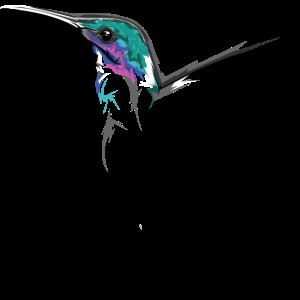 kolibri hummingbird illustration symbol