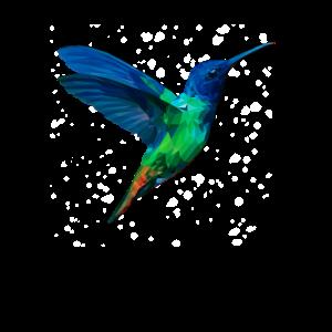Hummingbird Illustration Vogel