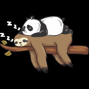 Panda Faultier Geburtstag Weihnachten Freunde Idee