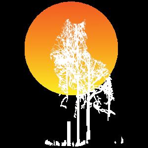 Wolf Sun Forest Nature Geschenk