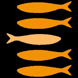 Sardinen Orangen