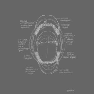 Die Mundhöhle Kreidezeichnung