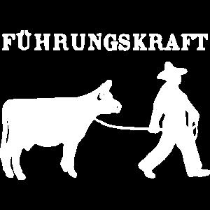 Führungskraft kuh Landwirt Bauer Kühe