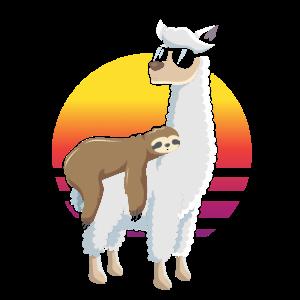 Faultier auf Lama