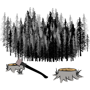 Wald Natur Bäume Wildnis Holzfäller Holz