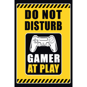 do not disturb, Gamer at play