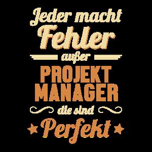 Projektmanager sind Perfekt ITProjektleiter
