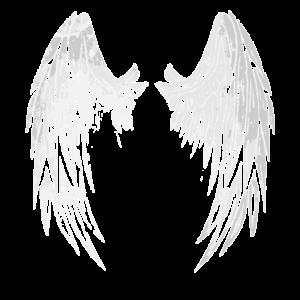 2reborn angelwings engelfügel Angel Engel grau