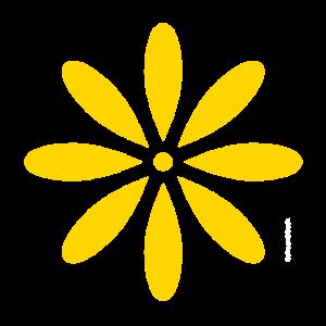 Schoen&Guth Blüte GELB