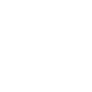 Koch Definition Definition Koch