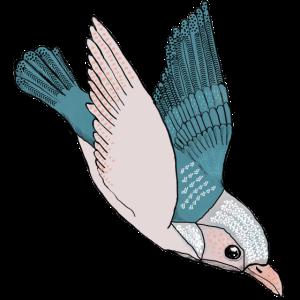 Vogel im Sturzflug