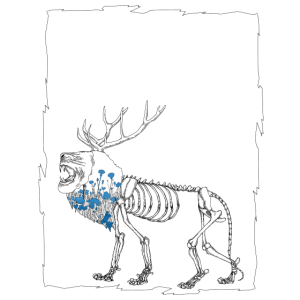 Löwenhirsch Blumen Illustration