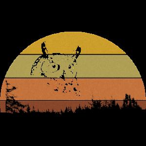Eule im Halbkeis Waldmotiv
