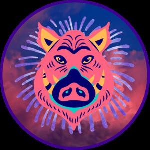Wildschwein Krafttier
