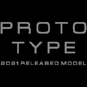 Prototyp 2021 Modell