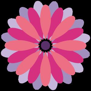 Schoen&Guth Gefüllte Blüte ROSA
