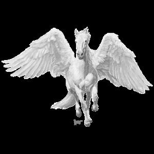 Bronko55 No.49 – Pegasus