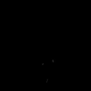 Teamsport Reiter Schwarz