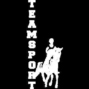 Teamsport Reiter Weiß