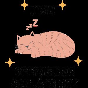 Schlafshirt