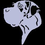 Doggen kopf gefleckt - Great Dane