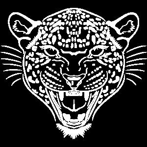 Leopard Leo Wildkatze Katze