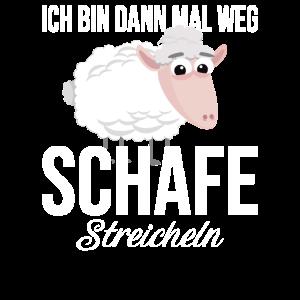 Skudden Ich Bin mal Weg Schafe Streicheln Schafe
