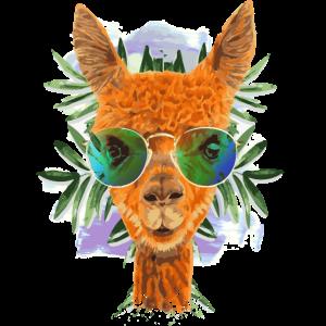 No Drama Lama - Alpaca - Alpaka Zeichnung