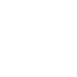 Wald Natur Wildnis
