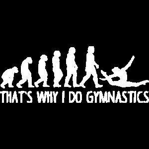 Gymnastik Evolution