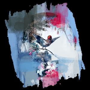 Vogel, Zeichnung, Malerei, Barock, , wasserfarbe