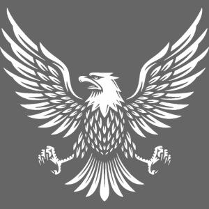 Adler usa amerikanisch