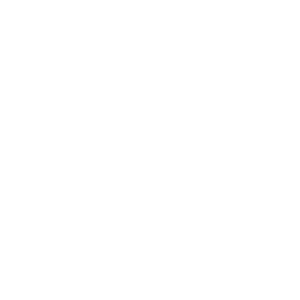 Mystischer Vogel mit Sonne Mond und Sternen