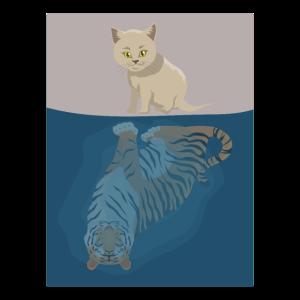 Katzen Katze