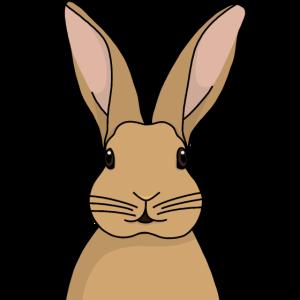 Kaninchen (braun)