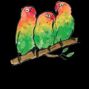 Aquarell Papageien