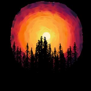 Wald Natur Flora Botanisch Sonnenuntergang Bäume