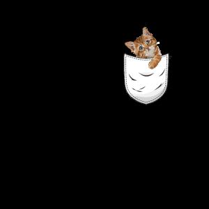 Katze Brusttasche