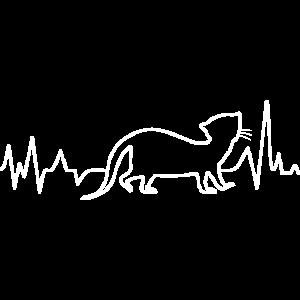 Hermelin Kurzschwanzwiesel Ermine Herzklopfen